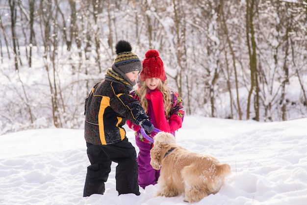 Kids play with cocker spaniel in winter forest