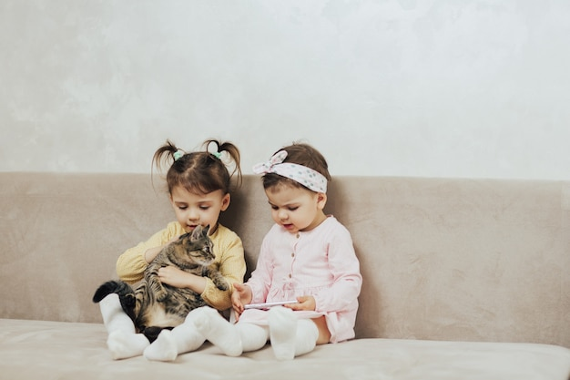 Kids play with cute cat on the couch in the living room