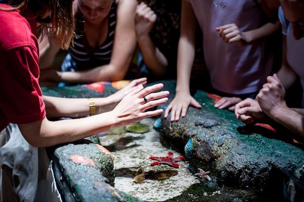 水族館で魚を遊んでいる子供たち