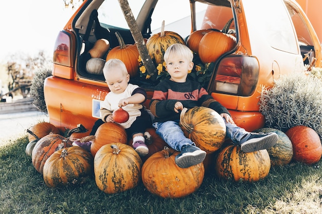 Kids sitting in pile of pumpkins little girl and boy are playing with pumpkins at pumpkin patch