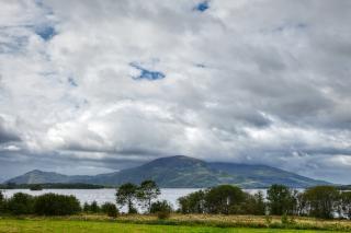 Killarney park   hdr  tree
