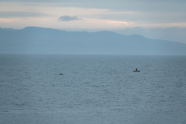 Killer whale swims near the fishermen's boat Premium Photo