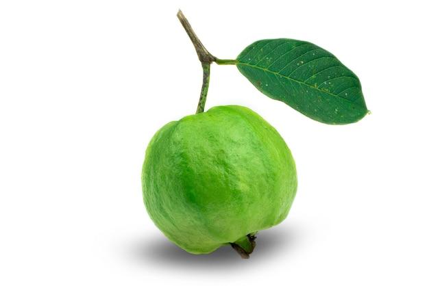 흰색 바탕에 잎이 있는 김치 구아바 과일