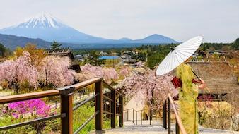 Kimono girl with Mt. Fuji and sakura