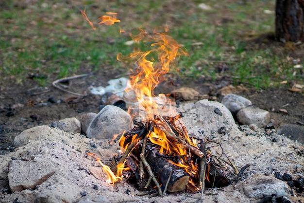 Разжечь костер в лесу во время отдыха