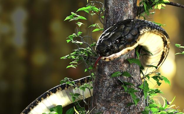 キングコブラクリッピングパスのあるジャングルの世界最長の毒ヘビ、キングコブラスネーク