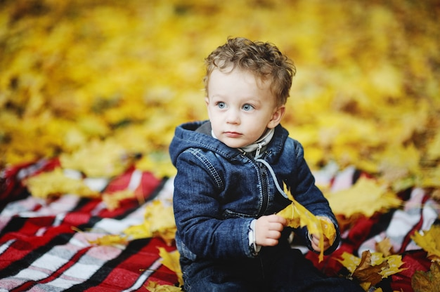 Kinky baby with blue eyes sitting with yellow leaves in hand on a background of autumn leaves