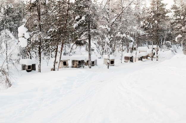 Kiruna laplandスウェーデンの冬の風景