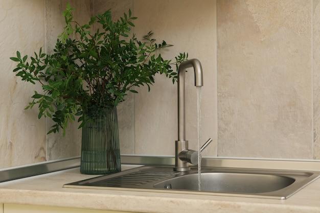 蛇口と植物が付いている花瓶が付いている台所流し