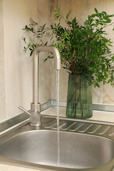 Kitchen sink with faucet and vase with plant