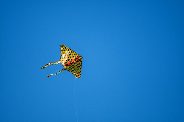 Kite on the blue sky.