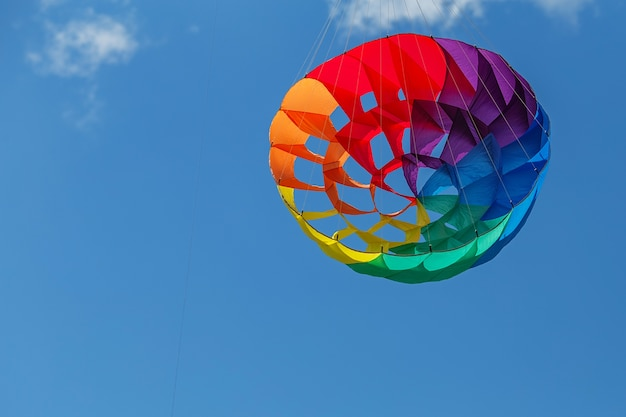 Kites flying in a blue sky