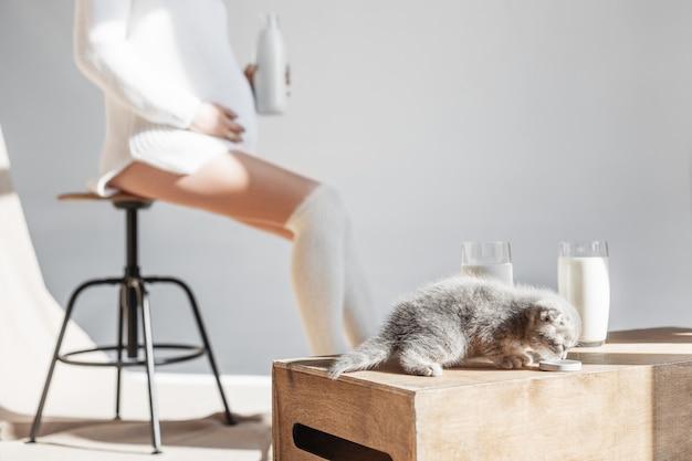 우유를 마시는 새끼 고양이와 임신 한 여자는 우유 병에 앉아있다.