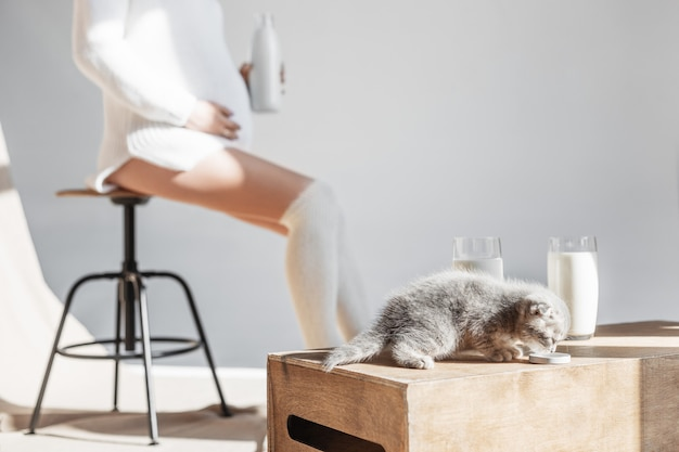 Kitten drinking milk and pregnant woman sits with a bottle of milk