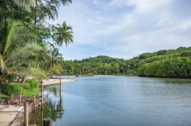 Klong chao river on koh kood island at trat thailand.koh kood, also known as ko kut, is an island in the gulf of thailand