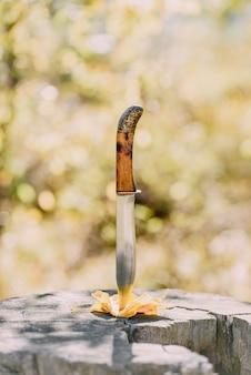 가을 숲에서 노란 잎과 오래된 그루터기에 찔린 칼