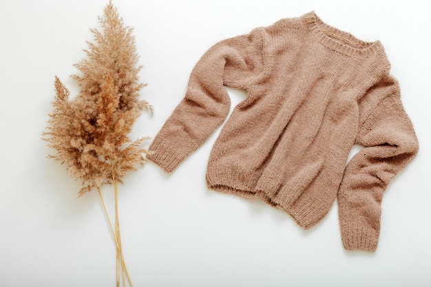 갈대 가지와 옷걸이에 니트 부드러운 베이지색 스웨터. 따뜻한 세련된 홈웨어 겨울 봄 복장 cortaderia 분기 꽃 팜파스 잔디와 갈색 따뜻한 니트 스웨터. 캐시미어 스웨터는 흰색으로 날아갑니다.