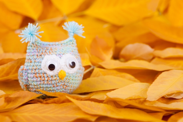 Knitted toys little owls needlework autumn composition