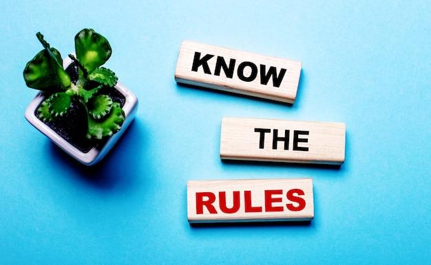 Знай правила написано на деревянных блоках на голубой поверхности возле цветка в горшке.
