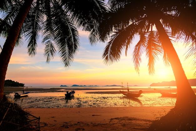 Закат над тропическим пляжем с кокосовой пальмой и лодкой в koh tao