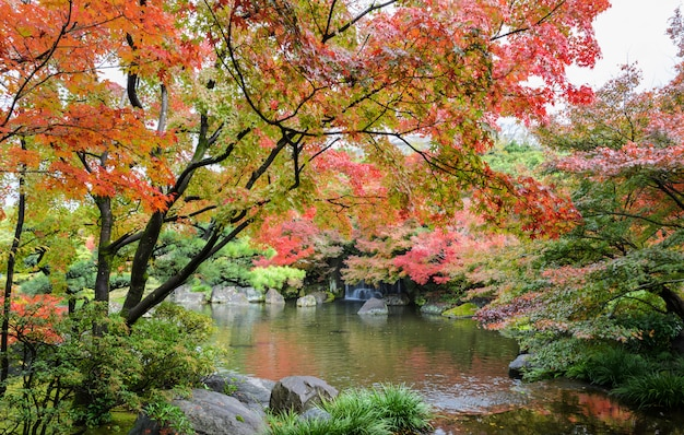 Kokoen, traditional japanese garden  during autumn season in himeji, japan