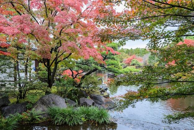 Kokoen, traditional japanese garden during autumn season in himeji