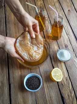 Kombucha fungus. organic fermented tea drink.
