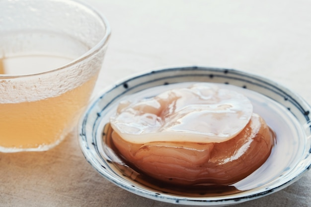 Kombucha mushroom scoby, fermented tea, probiotic food