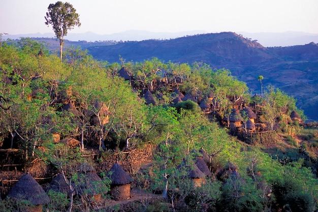 エチオピアのヒルズにあるコンソ族の山岳村