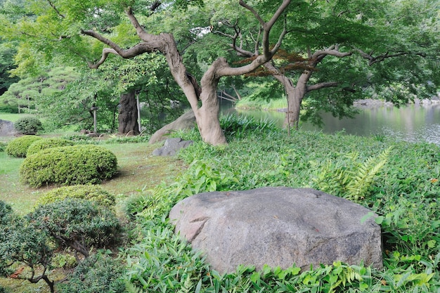 고 라쿠엔 공원