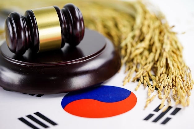Korea flag and judge hammer with gold grain from agriculture farm. law and justice court.