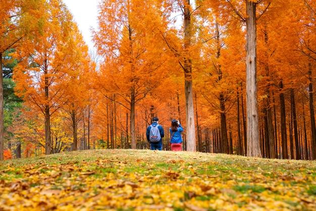 Korean couple walking in nami park in nami island