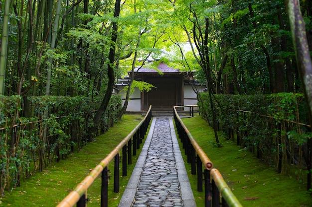Koto in zen temple famous for its garden
