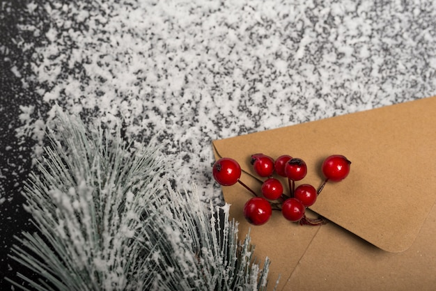 Kraft envelope with mountain ash berries on snow