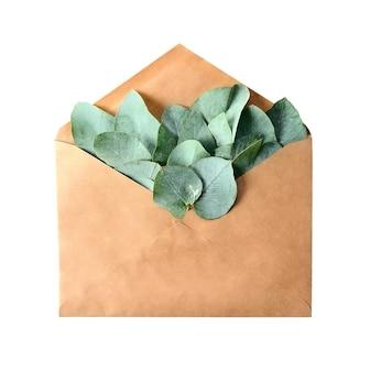 Изолированный конверт перца kraft и декоративные листья эвкалипта.