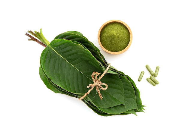 Kratom or mitragyna speciosa green leaves, powder and capsule isolated on white background.top view,flat lay.