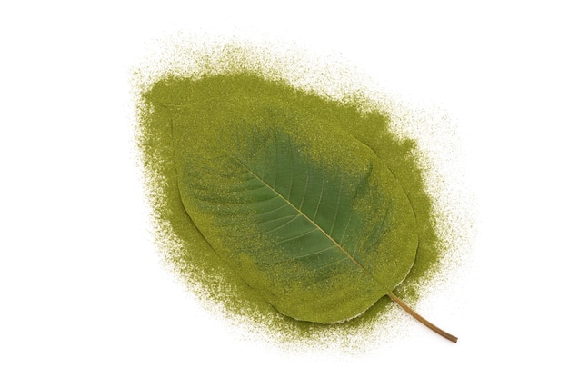 Kratom or mitragyna speciosa isolated on white background.top view,flat lay.