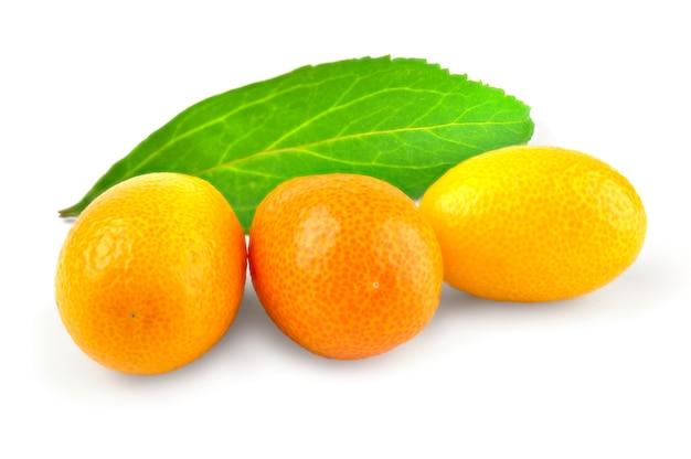 白い背景のカットアウトで分離されたキンカン柑橘類。