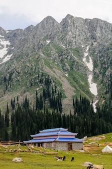 Кумрат долина джаз банда красивый пейзаж видом на горы