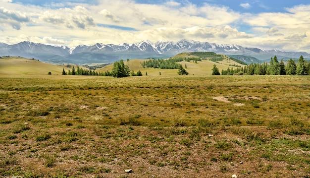 Kurai steppe overlooking the mountain range with snow-capped peaks. altai