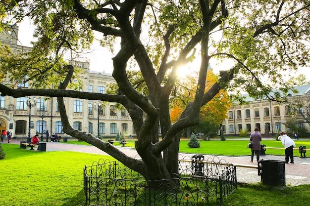 키예프, 우크라이나 - 2019년 10월 12일: 우크라이나 국립 기술 대학교. 키예프 폴리 테크닉 연구소. 큰 나무.