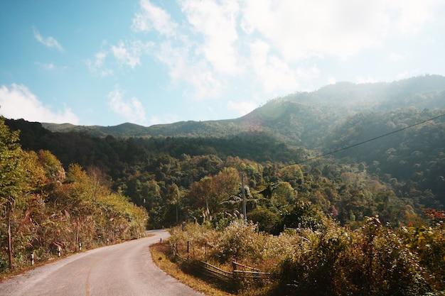 タイの山の曲線道路のl9abel警告