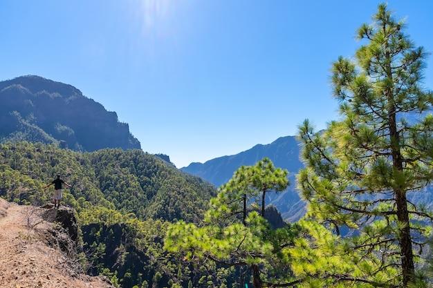 Национальный парк ла кумбресита в центре острова ла пальма, канарские острова, испания