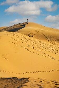 La dune du pyla with blue sky, aquitaine, france