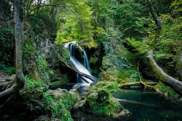ルーマニア、森のラヴァイオアガ滝。