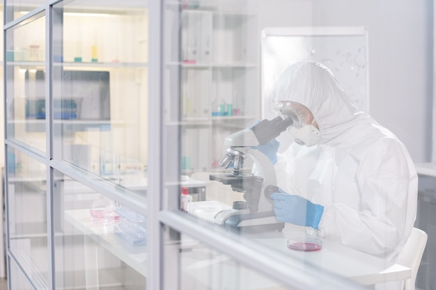 Lab worker in protective workwear sitting in scientific laboratory and looking in microscope while studying viruses and antidotes