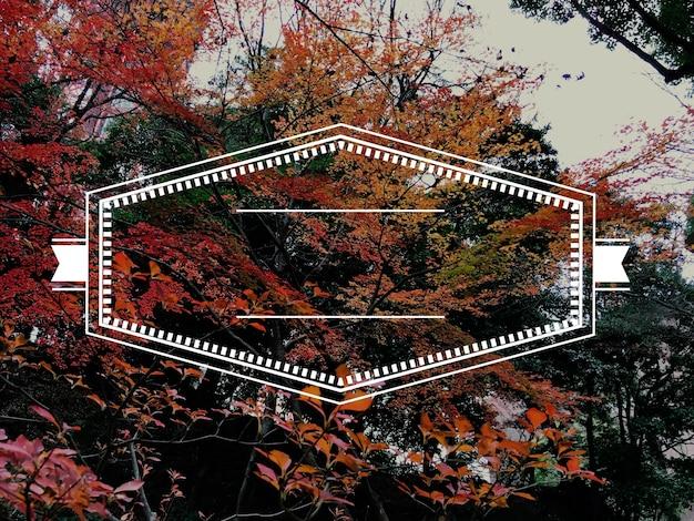 Etichetta emblema icona banner distintivo grafico