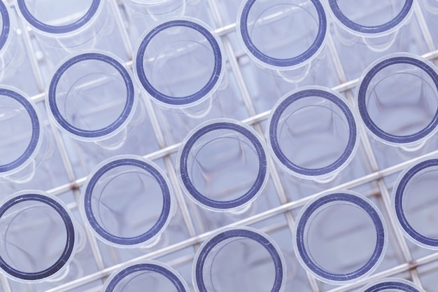 Laboratory lab tube in blue colour, tools in laboratory