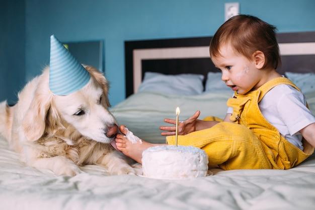 Лабрадор золотистый ретривер вместе с маленьким милым ребенком отметили день рождения