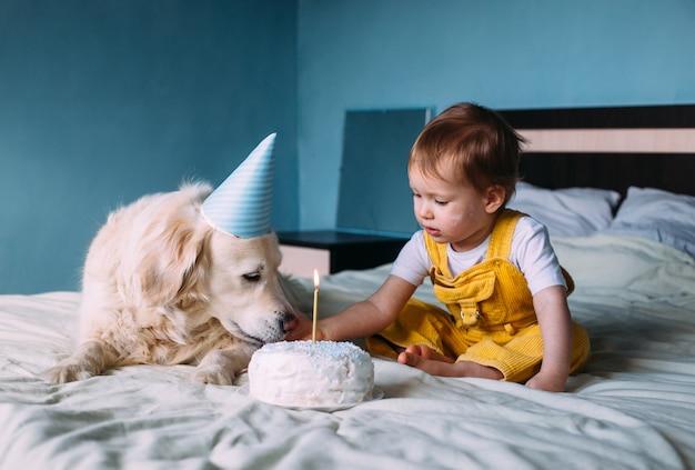 작은 귀여운 아이와 함께 래브라도 골든 리트리버는 생일을 축하합니다